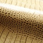 Hadí kůže